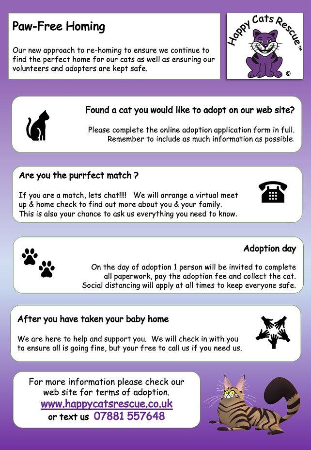 HCR Adoption Process Poster.jpeg