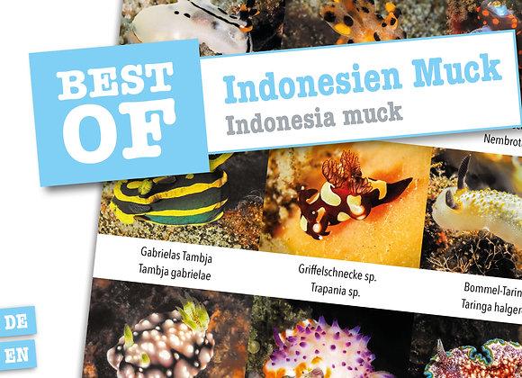 Indonesien Muck