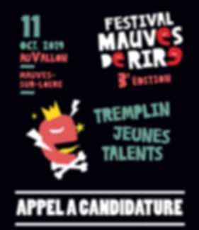 Candidature Tremplin Web.jpg