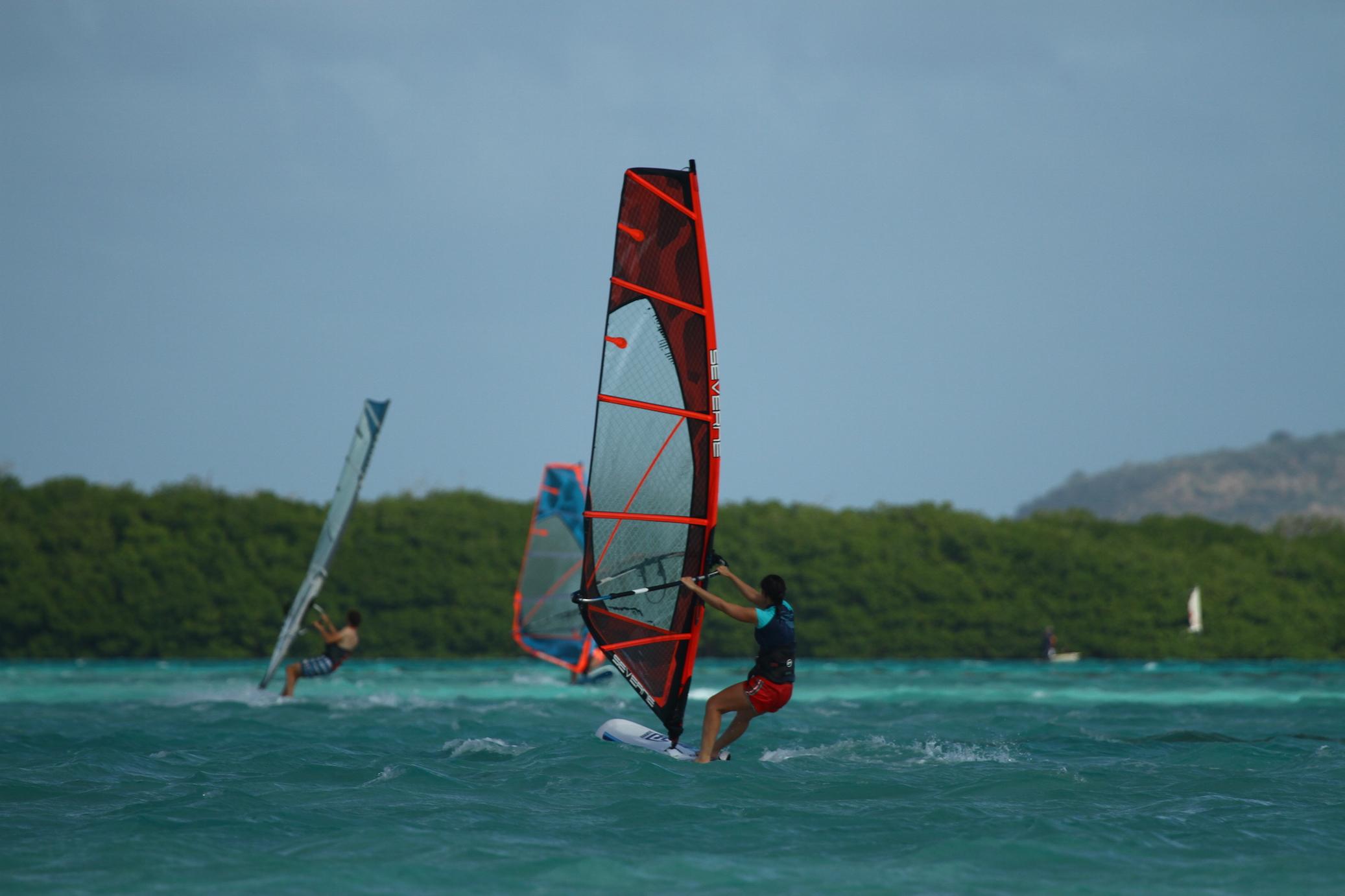 Alice has caught the windsurf bug