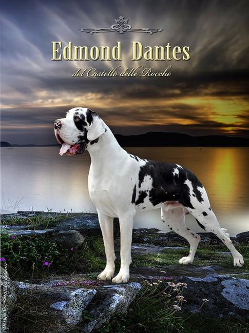 Edmond Dantes DCDR
