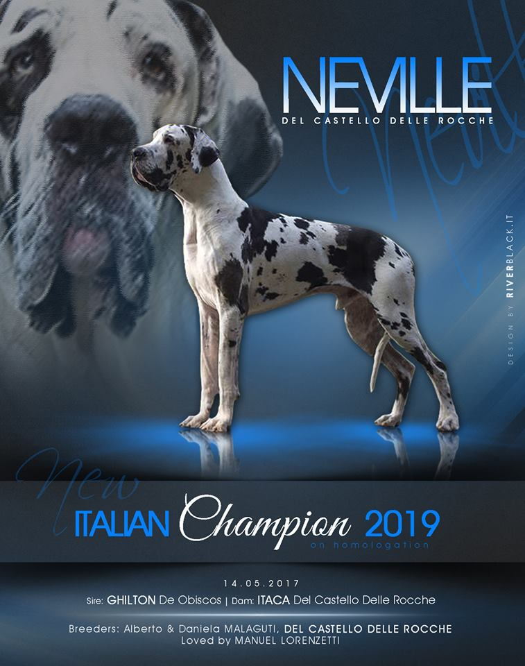 Neville Campione Italiano