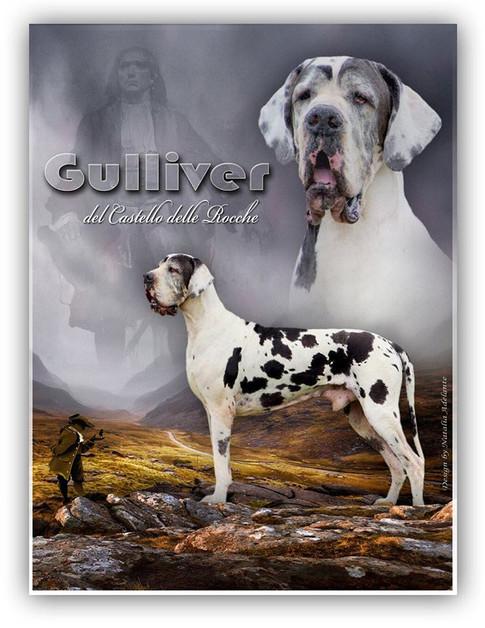 Gulliver DCDR