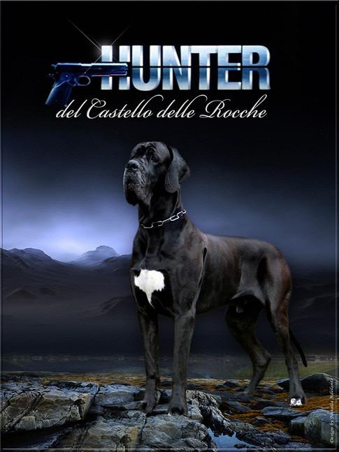 Hunter DCDR