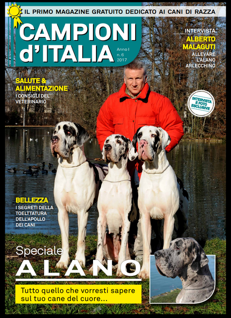 """Graziano, Lanzarote e Iron Man DCDR - Rivista """"Campioni d'Italia"""" Novembre 2017"""