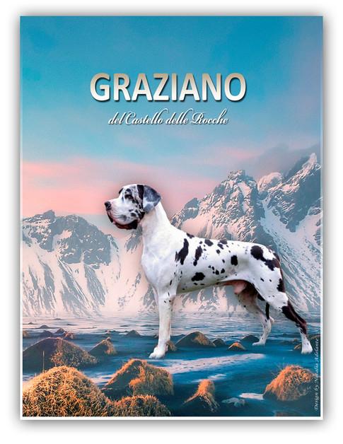 Graziano DCDR