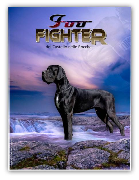 Foo Fighter DCDR