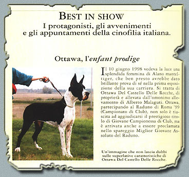 """Ch. Ottawa Del Castello Delle Rocche Rivista """"ARGOS"""" Marzo 2000"""