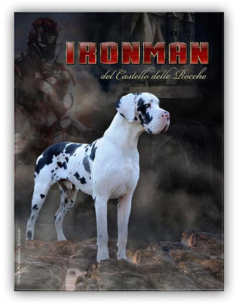 Iron Man DCDR