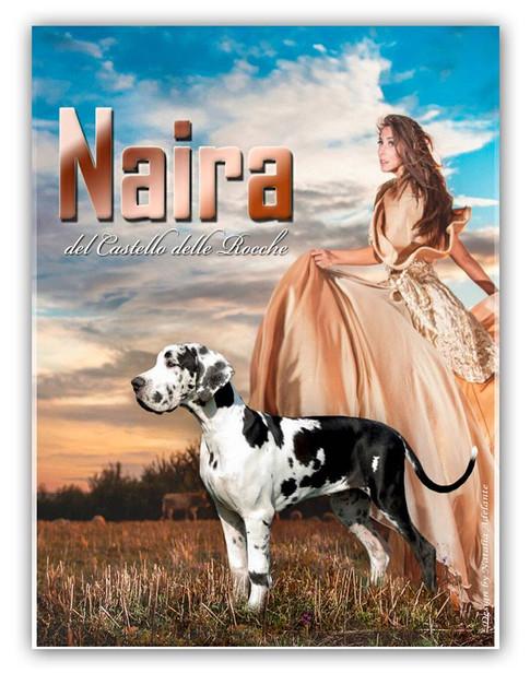 Naira DCDR