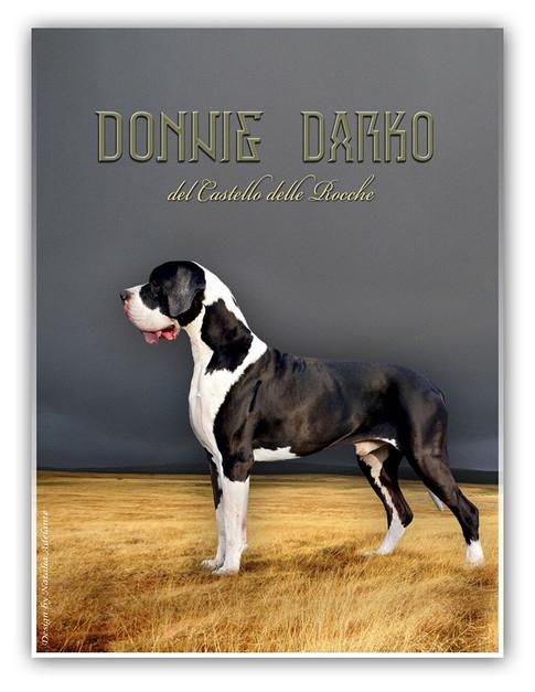 Donnie Darko DCDR