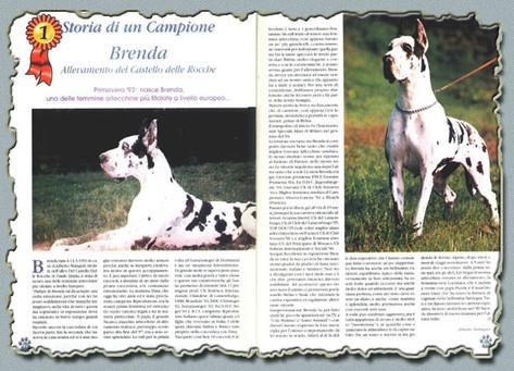 """Rivista """"MON AMI"""" Novembre 1999 - """"Storia di un Campione"""" Ch. BRENDA - Del Castello Delle Rocche"""