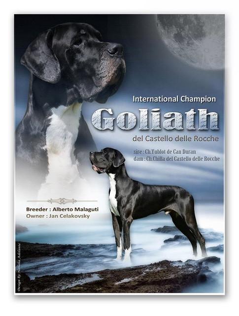 Goliath DCDR
