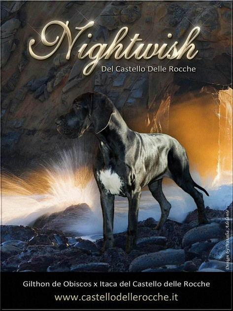 Nightwish DCDR
