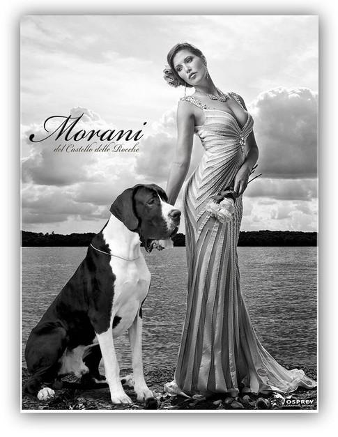 Morani DCDR.jpg