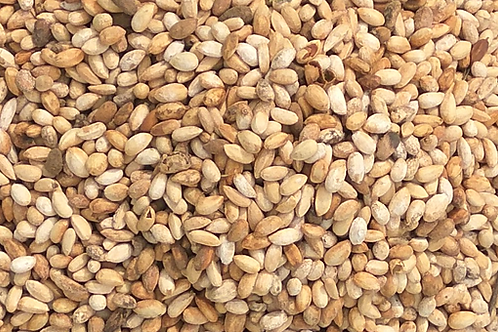 Neem Seeds from Ghana (1,000kg)