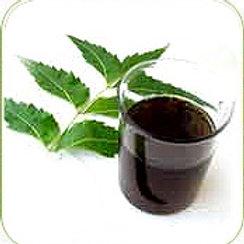 Pure Neem Oil from Ghana (25 Liters)