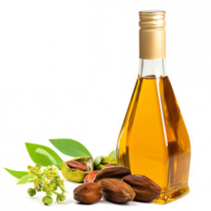 Pure Jojoba Seed Oil from Egypt (25 liters)