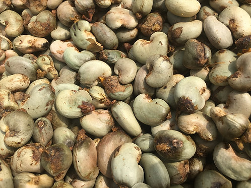 Raw Cashew Nuts (25kg)