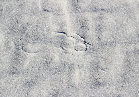 Soft footprint(s) in white sand.jpg
