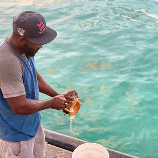 Barbados7.jpg