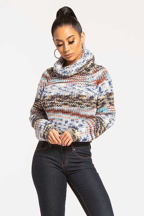 Turtle Neck Crop Sweater