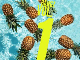 Da Summer Bangz Vol. 1 The Playlist