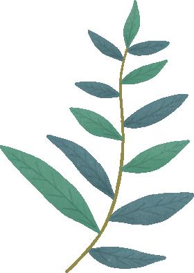 leafs JAABBS.png
