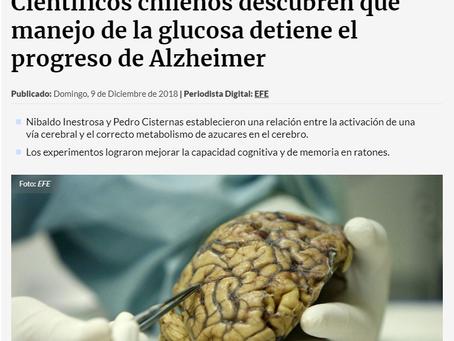 Científicos chilenos descubren que manejo de la glucosa detiene el progreso de Alzheimer