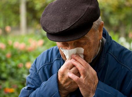 Artículo: Alergias en los mayores, prevención y tratamiento.