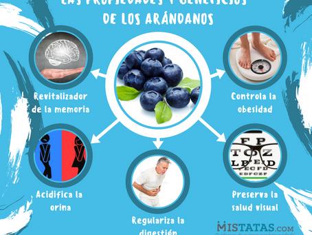 LAS PROPIEDADES Y BENEFICIOS DE LOS ARÁNDANOS