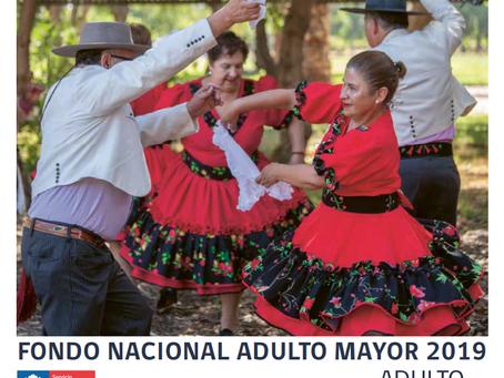 BASES PROYECTOS AUTOGESTIONADOS FONDO NACIONAL DEL ADULTO MAYOR AÑO 2019