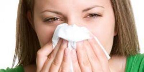 rinitis alergica estacional invierno