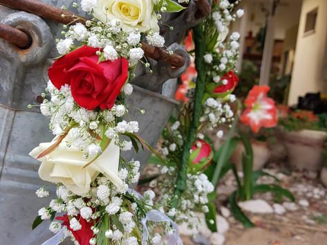 פרחי שלום