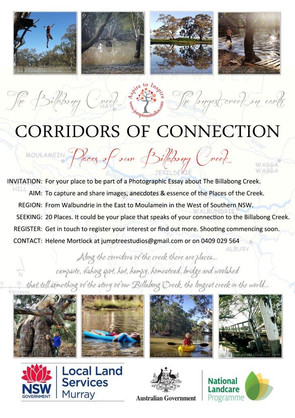 Corridors of Connection - Places of the Billabong Creek