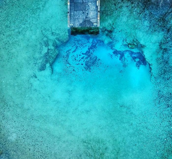 Deep Blue Down