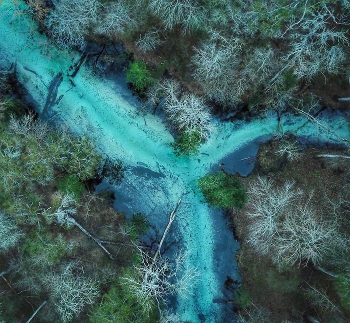 Blue Cross Roads