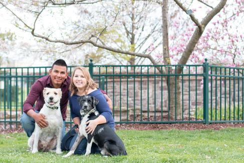 Pet Photographer Columbia MO