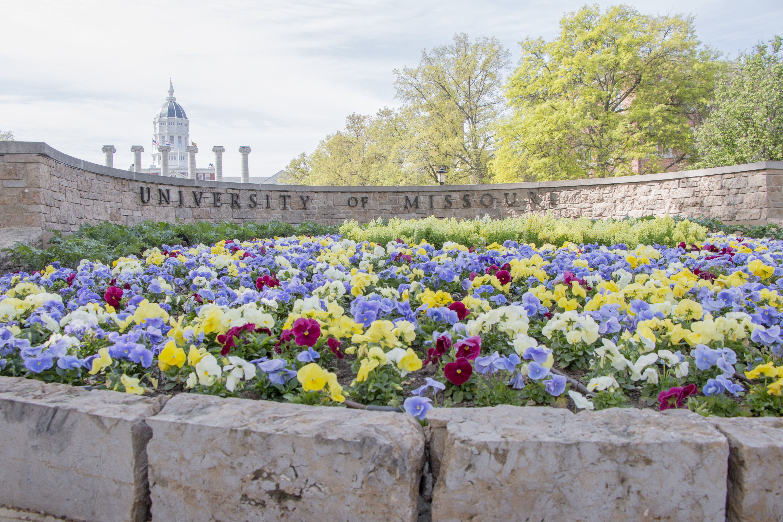 Mizzou Blooms | Fine Art