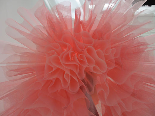 new website pic tulle 1.jpeg