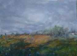 """Wild Irises on a Farm, 36"""" x 48"""""""
