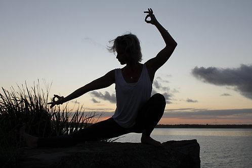 Vinyasa Class: Pranayama. Meditation. Asana