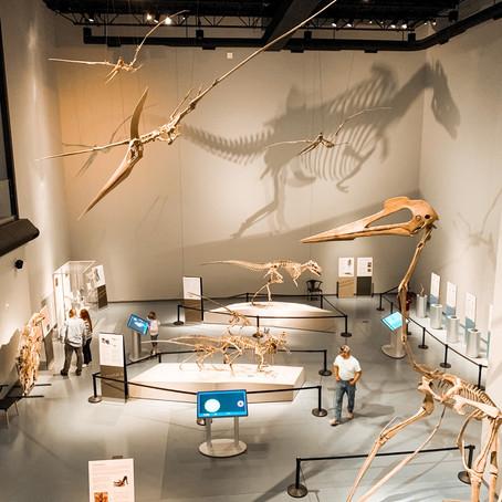 The Museum of Idaho