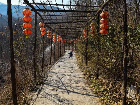 The Jingtang Ancient Village