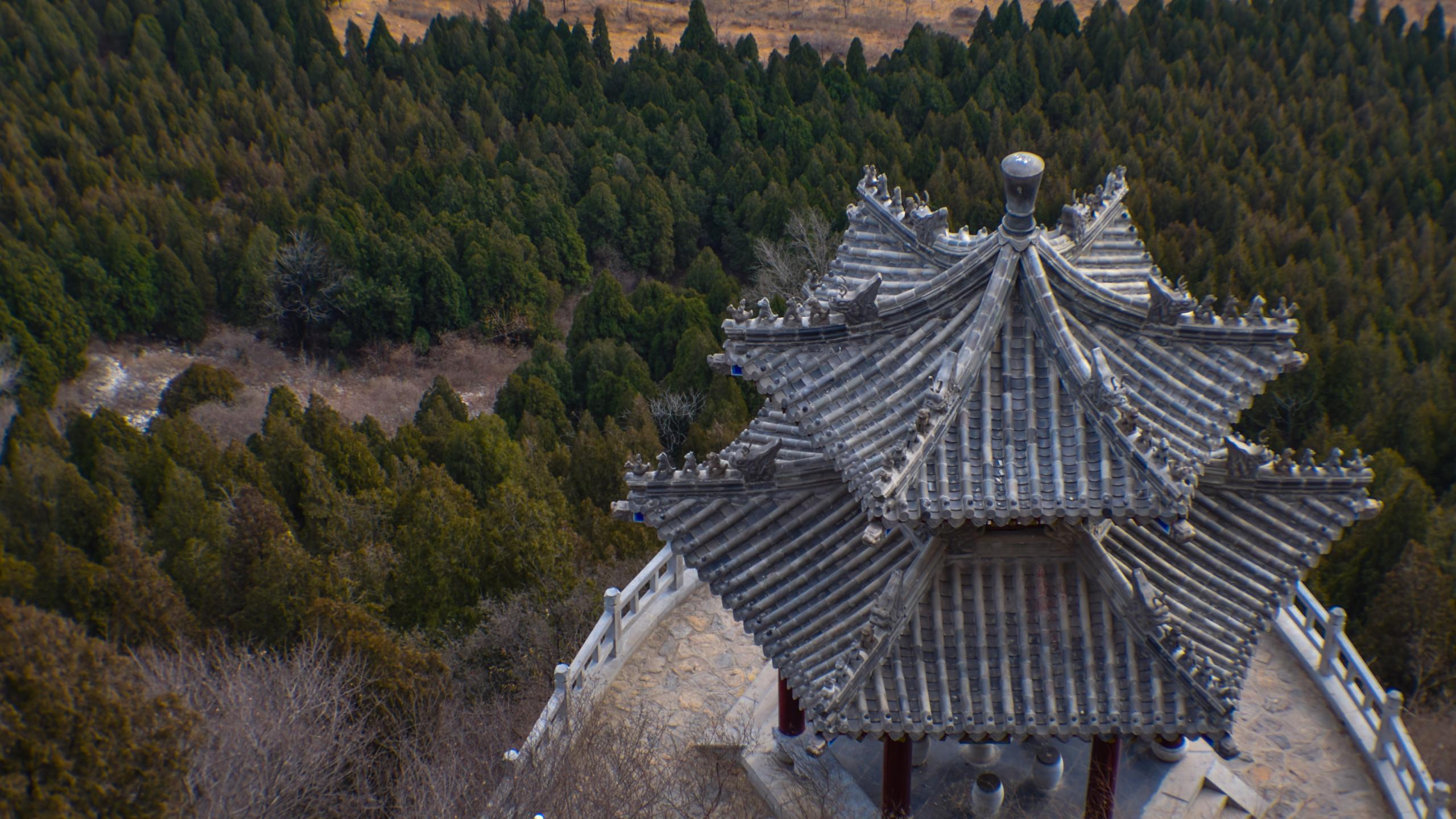 pavillion roof