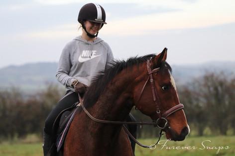 horse 5.jpg