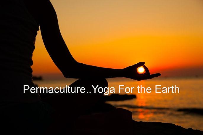 yogaLarge2.jpg