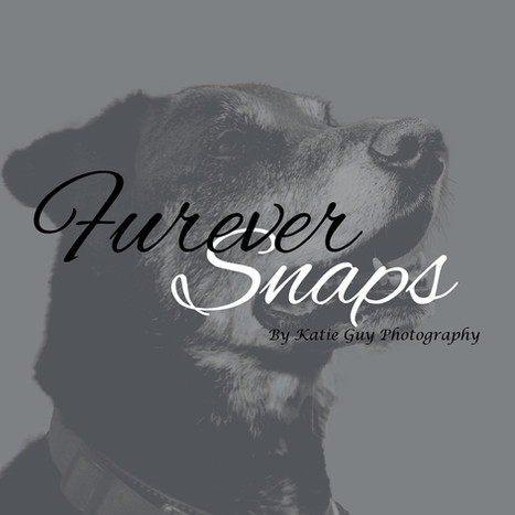 Furever Snaps