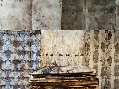 Hanji plant printed paper -