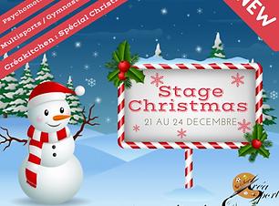 Copie de Christmas Concert.png